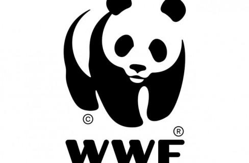 Verso Rio+20: rapporto State of the World 2012