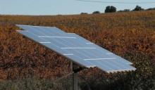 Rinnovabili: il nuovo decreto è pronto e non sarà indolore