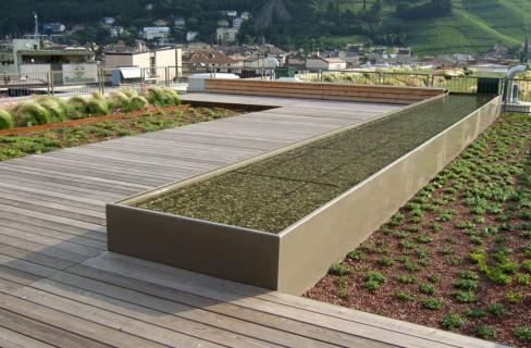 Un giardino su ogni tetto: così le città diventano più verdi | Tekneco