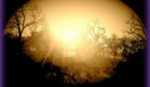 La quantistica punta a catturare la luce solare