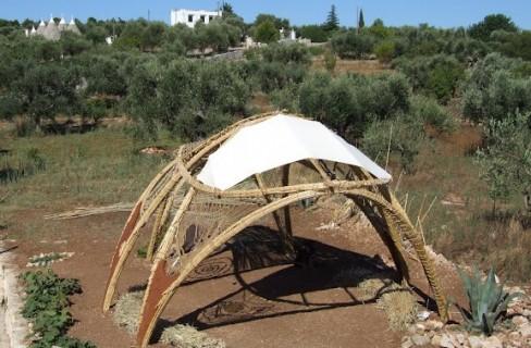 Natura in Architettura: nuove frontiere ecologiche