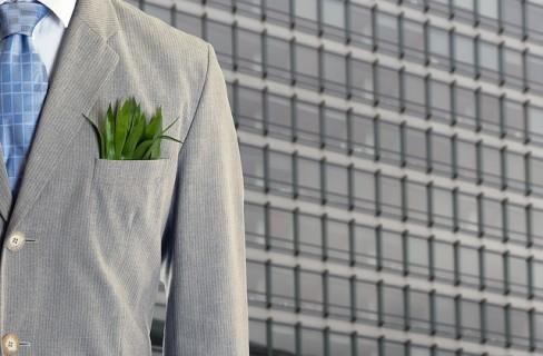 Le idee green sono premiate