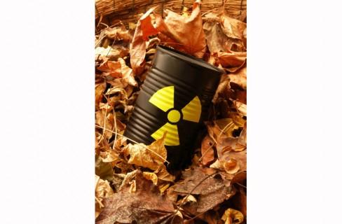 Nucleare senza casa