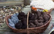 Vita nuova per la lana toscana