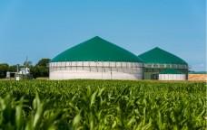 Nuove opportunità per le bioenergie italiane