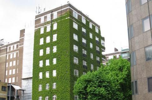 «Certificare green un edificio è una risorsa»