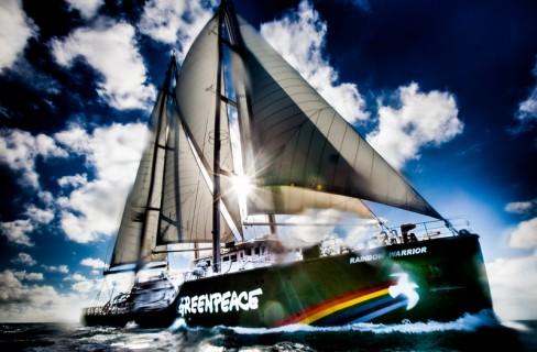 Greenpeace, 45 anni di battaglie per l'ambiente
