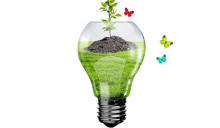 Offerte luce e gas, meglio se 100% green