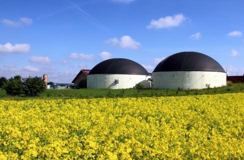 Biogas ai nastri di partenza