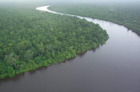 Servizi Ecosistemici: di cosa si tratta?