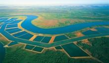 Il Piano Nazionale dell'Acquacoltura punta a una crescita del 37,8%