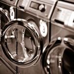 lavatrici-eclectic_cat