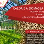 03-caldaie a biomassa per le serre