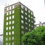 ecosostenibilità in edilizia