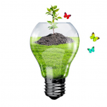 offerte-energia-verde_900x600